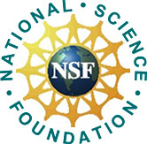 Nsf dissertation research improvement